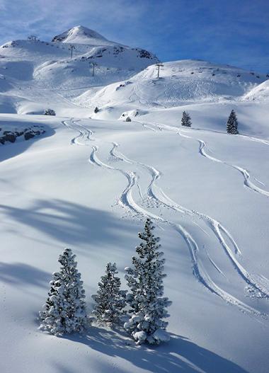 Ski alpin la pierre st martin en bar tous en b arn pyr n es - Office de tourisme la pierre saint martin ...