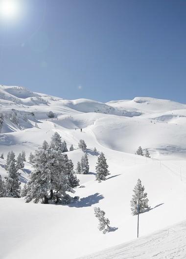 pierre saint martin b arn pyr n es ski nordique for t du braca. Black Bedroom Furniture Sets. Home Design Ideas